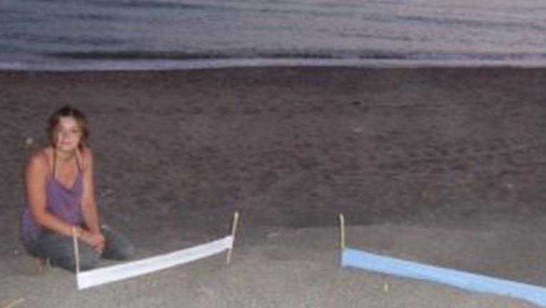 Bidra.no - Markering av havskilpaddereir.