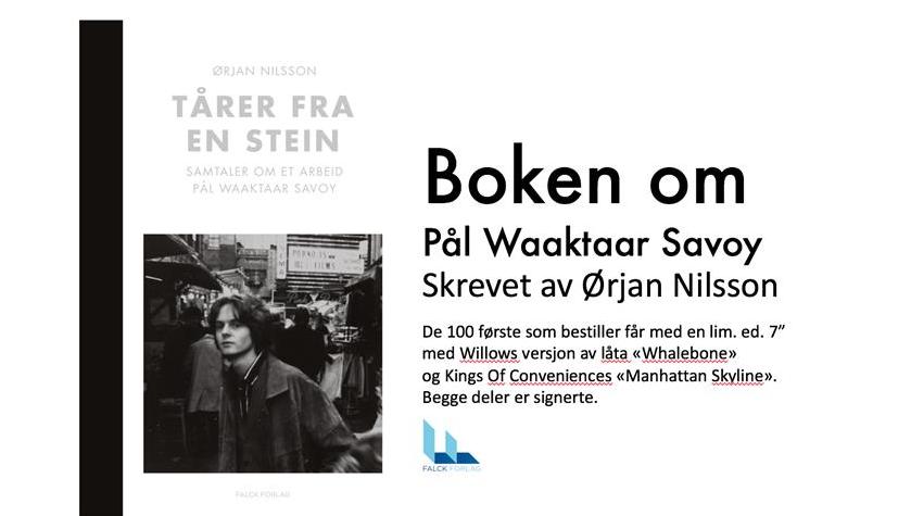 Tårer fra en stein: Boka om Pål Waaktaar Savoy