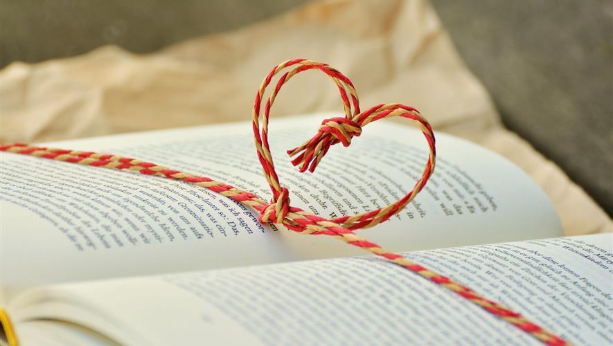 Bidra.no - Til deg og en venn - 2 bøker